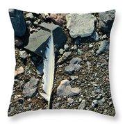 Antarctic Feather Throw Pillow