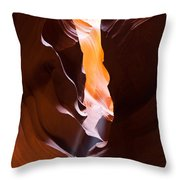 Antelope 28 Throw Pillow