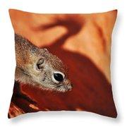 Antelope Ground Squirrel II Throw Pillow