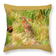 Antelope Jackrabbit Throw Pillow