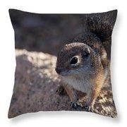 Antelope Swirl  Throw Pillow