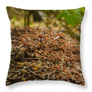 Anthill In Forest Throw Pillow