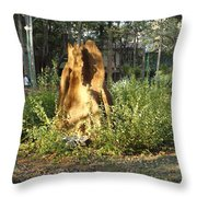 Anthill Throw Pillow