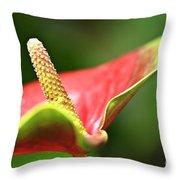 Anthurium Blossom Throw Pillow