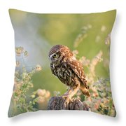 Anticipation - Little Owl Staring At Its Prey Throw Pillow