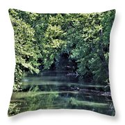 Antietam Creek Throw Pillow
