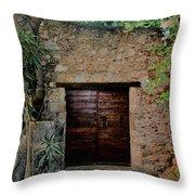 Antique Door Throw Pillow
