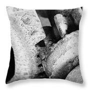 Antique Gears Throw Pillow