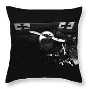 Antique German Warplane Throw Pillow