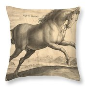 Antique Horse Engraving - Equus Regius Throw Pillow