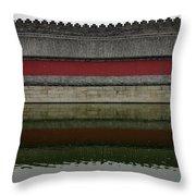 Antique Perimetral Wall Throw Pillow