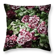 Antique Pink Roses Throw Pillow