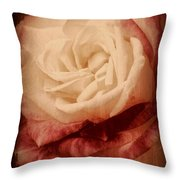 Antique Rose - In Full Bloom Throw Pillow