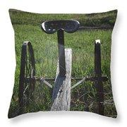 Antique Seat Throw Pillow