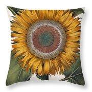 Antique Sunflower Print Throw Pillow