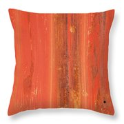 Antique Wall Texture Throw Pillow