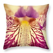 Antiqued Iris Throw Pillow