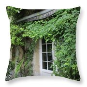 Antiques Shop Brussels Throw Pillow