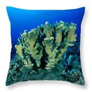 Antler Coral Throw Pillow