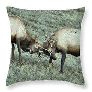 Antler To Antler Throw Pillow