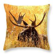 Antlers In The Golden Grass Throw Pillow