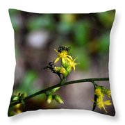 Ants On A Flower Throw Pillow