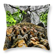 Ants View Throw Pillow
