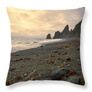 Anxiety Morning On The Ocean Shore. Throw Pillow