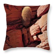 Any Crack Will Do Throw Pillow