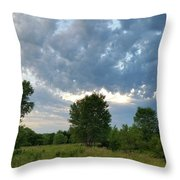 Any Shelter In A Storm Throw Pillow