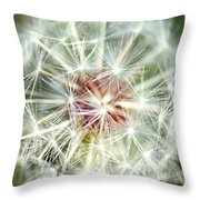 Anything Is Beautiful In The Right Context Throw Pillow