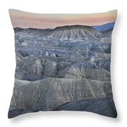 Anza Borrego Throw Pillow