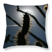 Anza Borrego Cholla Sillouette Throw Pillow