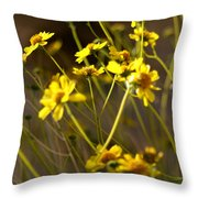 Anza Borrego Desert Sunflowers 1 Throw Pillow