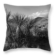 Anza-borrego Yuccas Throw Pillow