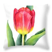 Apeldoorn Throw Pillow