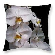 Aphrodite - White Orchid Throw Pillow