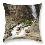 Apikuni Falls Throw Pillow by Margaret Pitcher