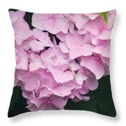 apink Hydrangea Throw Pillow