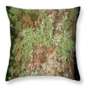 Appalachian Arbor Flora Throw Pillow