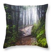Appalachian Light Throw Pillow