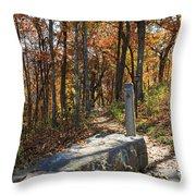 Appalachian Trail In Shenandoah National Park Throw Pillow