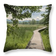 Appalachian Trail - Out Into The Light Throw Pillow