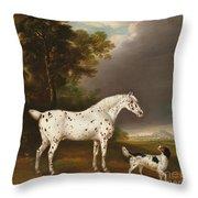 Appaloosa Horse And Spaniel Throw Pillow