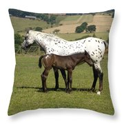 Appaloosa Mare And Foal Throw Pillow