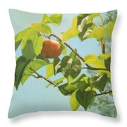 Apple A Day Throw Pillow