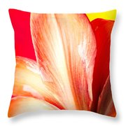 Apple Amaryllis Red Apple Amaryllis On A Pink And Yellow Background Throw Pillow