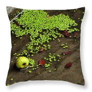 Apple And Algae In Dam Overflow Throw Pillow