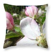 Apple Blossom Artwork Spring Apple Tree Baslee Troutman Throw Pillow