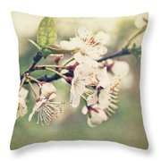 Apple Blossom Branch In Early Spring Throw Pillow by Sandra Cunningham